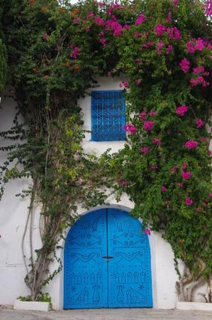 シディブサイド チュニジアンブルーの扉