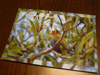 HELLから来たポストカード