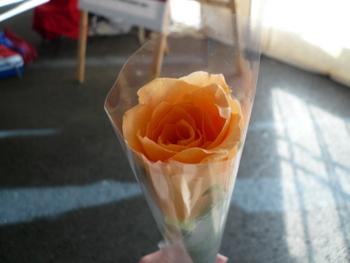 セント・ジョンでもらったお花