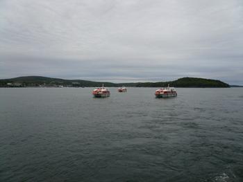 バーハーバーに浮かぶテンダーボート