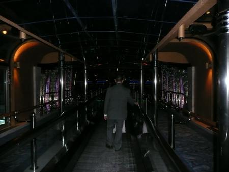 Skywalkers Nightclub in スタープリンセス