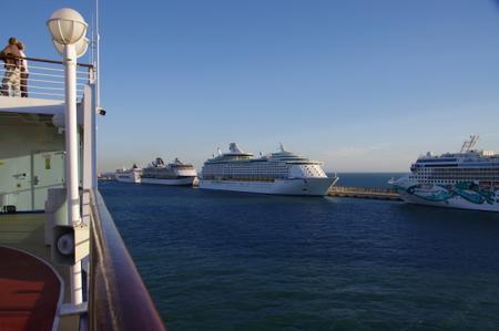 チベタベッキア港に集結したクルーズ船