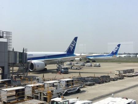 ANA ボーイング787-900 NH209便.JPG