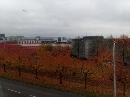 ガトウィック空港周辺の紅葉.jpg