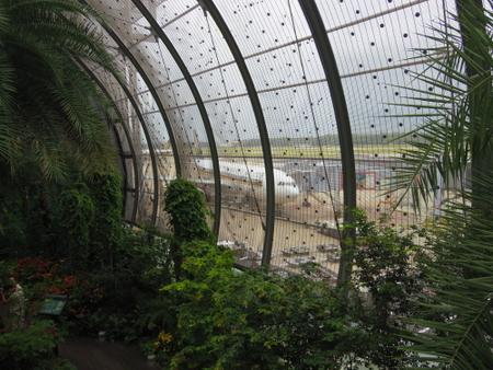 チャンギ空港のバタフライ・ガーデン