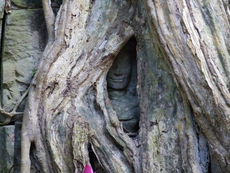 タ・プローム 仏像を探せ