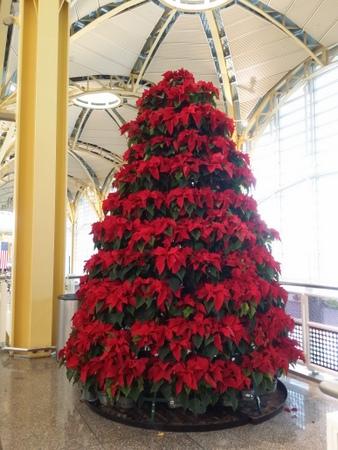 ナショナル空港のクリスマスツリー