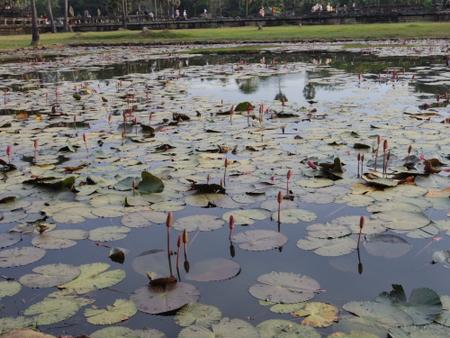 アンコール・ワットの聖池