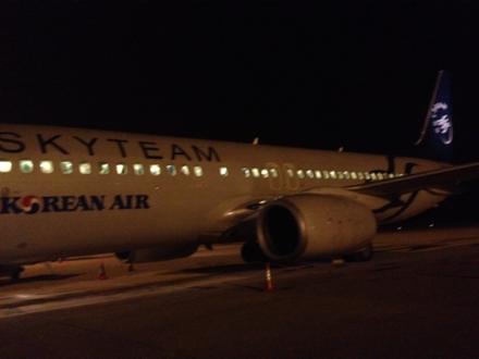 スカイチーム塗装の大韓航空 KE676便釜山行き